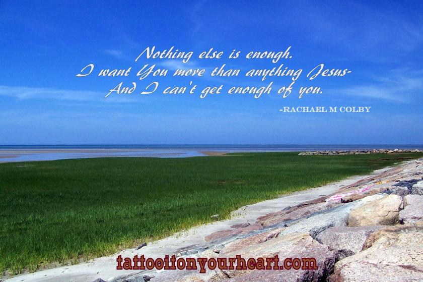 rachael_m_colby_tattoo_it_on_your_heart_nothing_else_is_enough-003