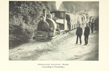 Himalayan Railway Train