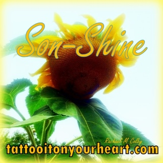 Rachael_M_Colby_Tattoo_It_On_Your_Heart_Guest Post _on_Pearl_Allard_Look_Up_Sometimes_How to_Nourish_Your_Soul_Series_Son-Shine